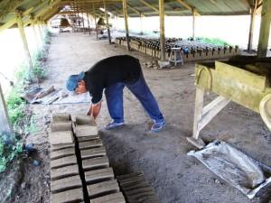 pembuatan batu bata 5
