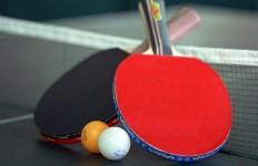 214656_ilustrasi-tenis-meja_663_382