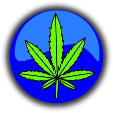 Marijuana di Kalangan Muda