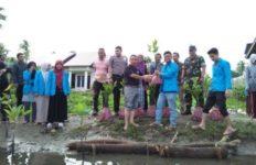 penanaman pohon bakau d rukoh, rilis kpm