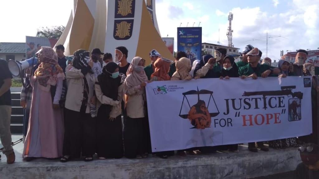BKSDA Desak Kepolisian Ungkap Kasus Orang Utan di Aceh